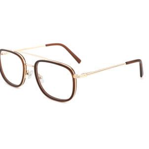 daan bril